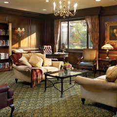Elegant library - Ideal for relaxation or conversation.